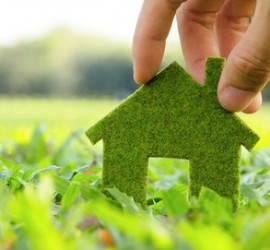 Relocation immobilière