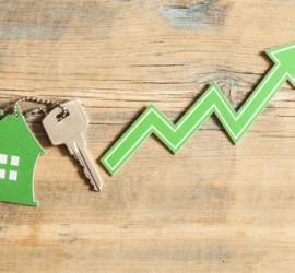 Visuel de l'article 2019, année record pour le marché immobilier
